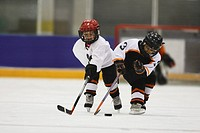 Young Hockey Player (thumbnail)