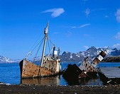 Shipwreck, Grytviken. South Georgia, UK