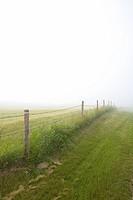 Fenceline in rural Saskatchewan, Canada