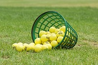 Spilled yellow golf balls on grass