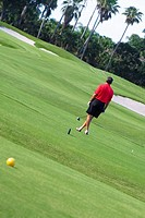 Rear view of a man holding a golf club in a golf course