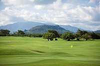 Trees in a golf course with a mountain range in background, Kauai, Hawaii Islands, USA