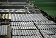 Large vegetable greenhouses