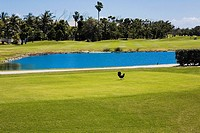 Lake in a golf course, Key West, Florida, USA