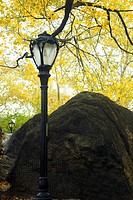Low angle view of a lamppost near a boulder, Central Park, Manhattan, New York City, New York State, USA