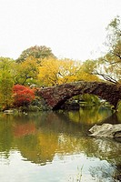 Reflection of a footbridge and trees in water, Central Park, Manhattan, New York City, New York State, USA