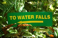 Close-up of an information board, Hawaii Tropical Botanical Garden, Hilo, Big Island, Hawaii Islands, USA