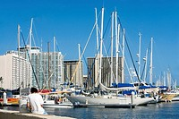 Sailboats docked at a harbor, Honolulu, Oahu, Hawaii Islands, USA (thumbnail)