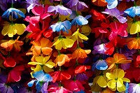 Close-up of garlands, Kona, Big Island, Hawaii Islands, USA