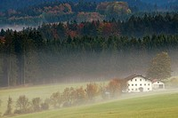 Farm in the Bavarian Forest, meadows and fog in autumn, pine forest, National Park Bayerischer Wald, Bavaria