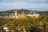 Buildings in a city, Florence, Tuscany, Italy (thumbnail)