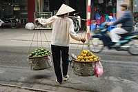 Rear view of a woman selling fruits, Hanoi, Vietnam