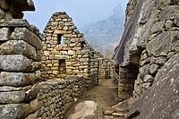 Street passing through the old ruins, Machu Picchu, Cusco Region, Peru