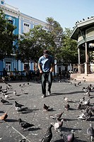 Young man standing with pigeons