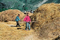 Portrait of children sun drying culm, Guyuan County, Hebei Province of People's Republic of China, FOR EDITORIAL USE ONLY