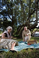 Mature couple having a picnic in a park