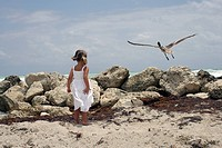 Girl 4-5 standing on seashore, looking at bird taking off, rear view