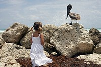 Girl 4-5 standing on shore, looking at bird sitting on rock, rear view