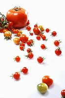 Different tomatoes on white background, elevated view