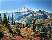 Mt. Baker in autumn taken from Austin Pass, Mt. Baker Ski Area, Washington State, USA
