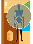 Osteoporosis can be prevented by milk and calcium consumption (thumbnail)