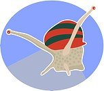 Illustration of a snail (thumbnail)
