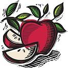 freshly sliced apples