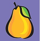 A pictorial illustration of a pear with purple background