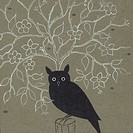 A black owl sitting on top of a tree stump
