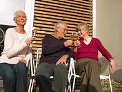 Senior adults drinking champagne