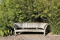 Empty bench near a hedge