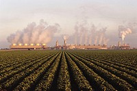 Geothermal fired power plant with fields. Imperial Valley, California, USA