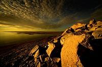 Artic landscape