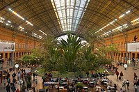 Spain, Madrid, central-railway station, Atocha, concourse, palm-garden