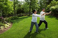Senior Asian couple practicing tai chi (thumbnail)