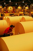 Worker inspecting rolls of paper in paper mill. Oregon, USA