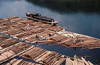 Logs on river awaiting shipment to urban markets, Guizhou. China