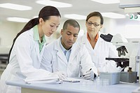 Group of lab technicians working together