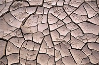 Mud cracks, Death Valley National Park. California, USA