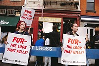 Animal rights activists demonstrating outside a fur retailer, protesting the use of animal skins to promote personal vanity. New York, USA