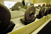 Row of dumbbell weights on rack at health club
