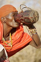Samburu drinks the blood of the cow, Samburu, Kenya
