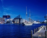 INNER HARBOR. DOWNTOWN SKYLINE. BALTIMORE MARYLAND. USA