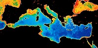 The mediterrannean basin