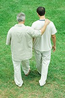 Father and adult son walking together outdoors, rear high angle view
