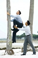 Businessman helping associate climb tree trunk, side view