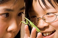 Two girls meeting a praying mantis