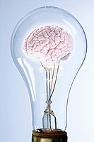 A brain inside a lightbulb
