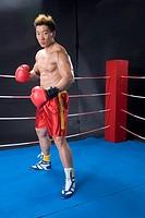 a male boxer