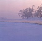 Overlook of frost-covered trees on Wusong Island, Jilin